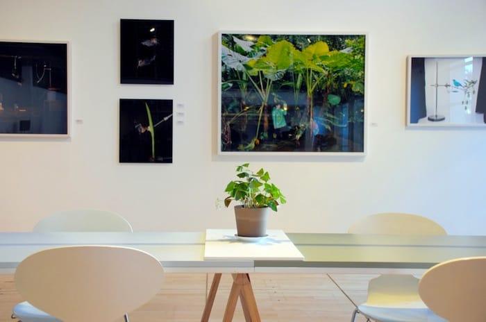 institut-finlandais-instituutti-cafe-paris-5-by-le-polyedre