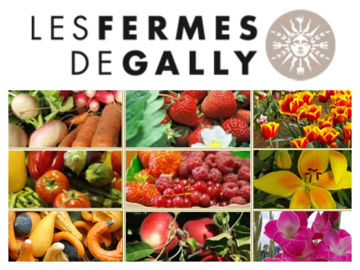 fermes-de-gally