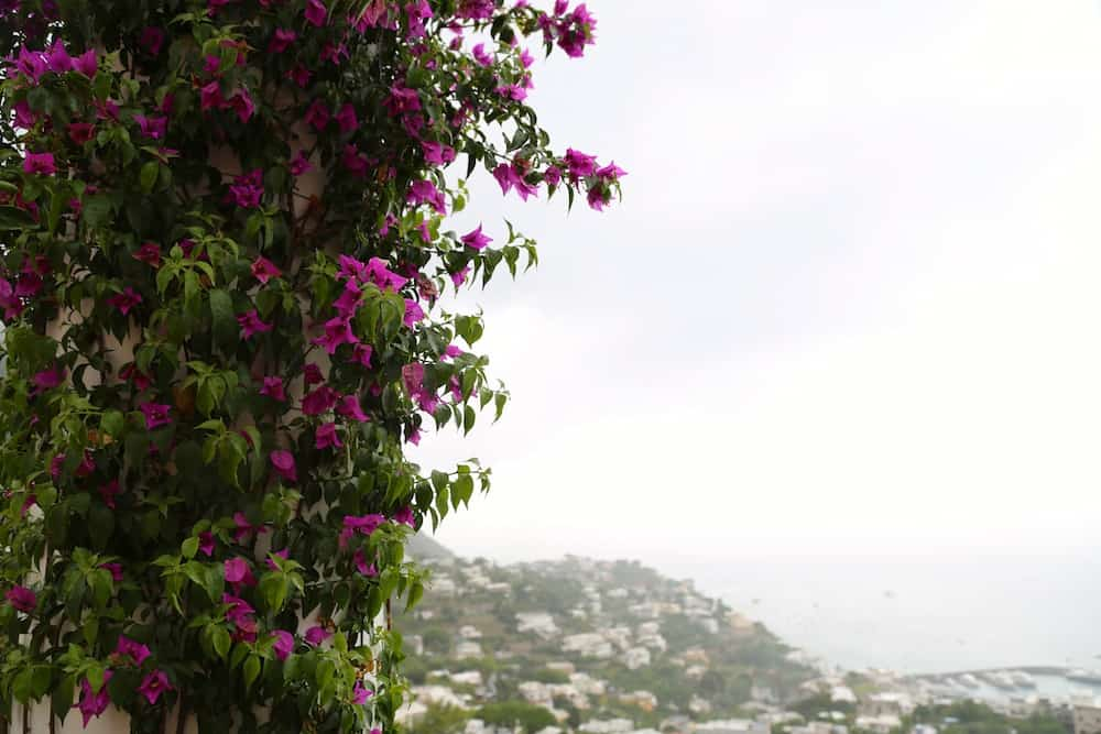 week-end-naples-capri-photos