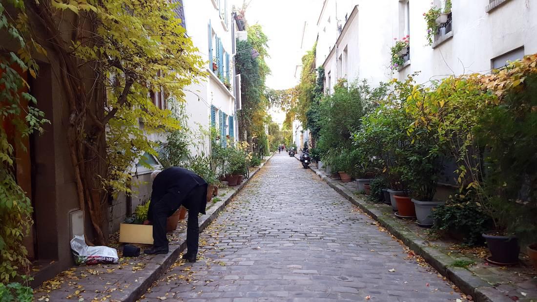 rue-des-thermopyles-paris14-pernety