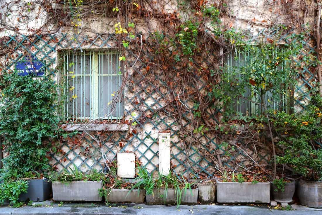 paris-13eme-cité-florale-photos
