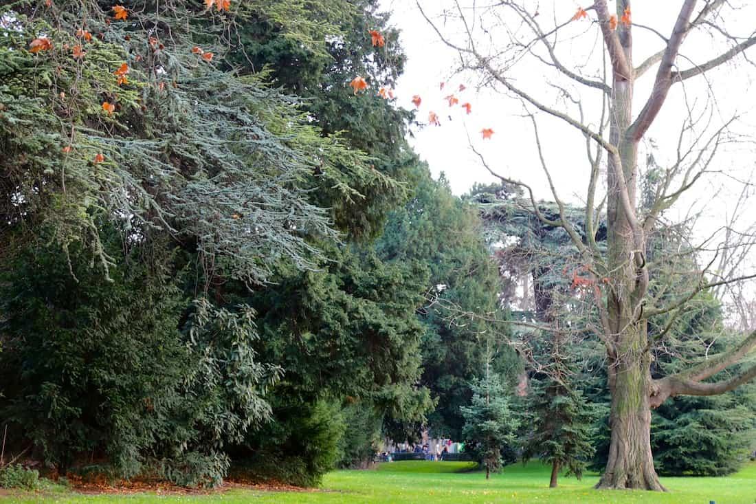 parc-montsouris-paris14e