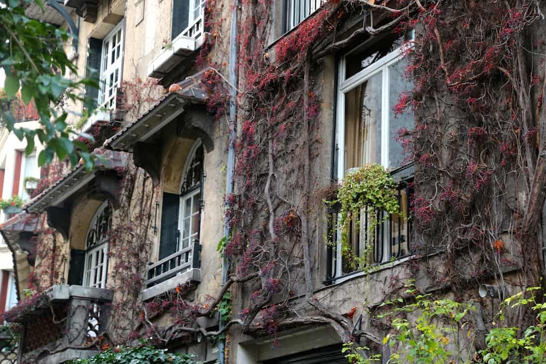 rue-du-square-montsouris-paris-75014
