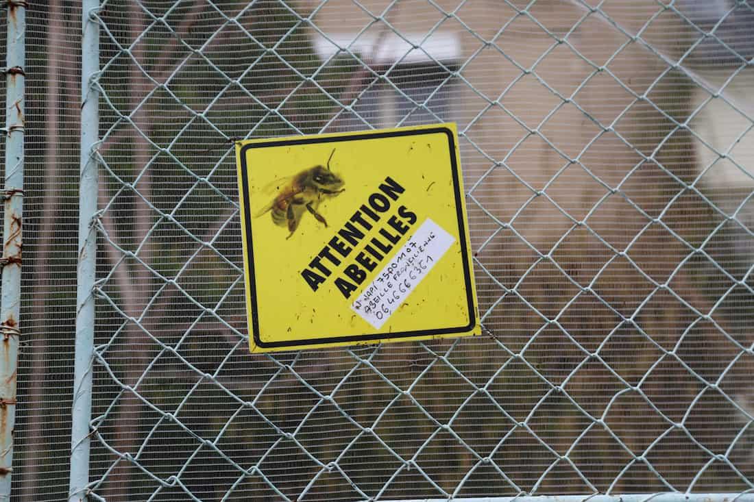 les-grands-voisins-hopital-saint-vincent-de-paul-abeilles