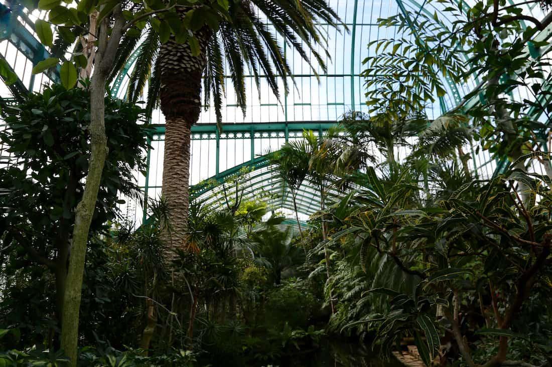 jardin-des-serres-auteuil-paris-16-visite