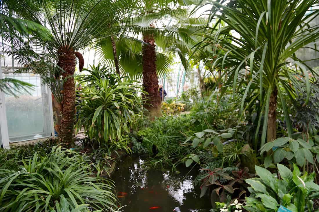 jardin-des-serres-auteuil-paris-16e-visite-photo