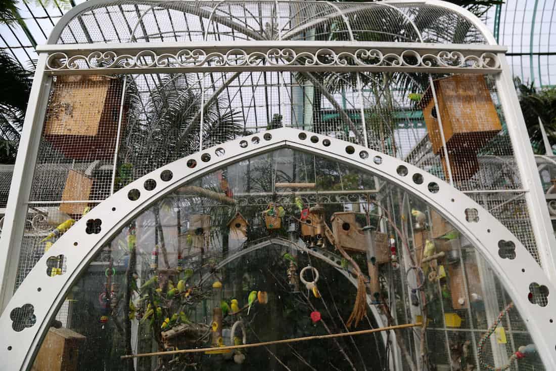 jardin-des-serres-auteuil-paris-16eme-visite