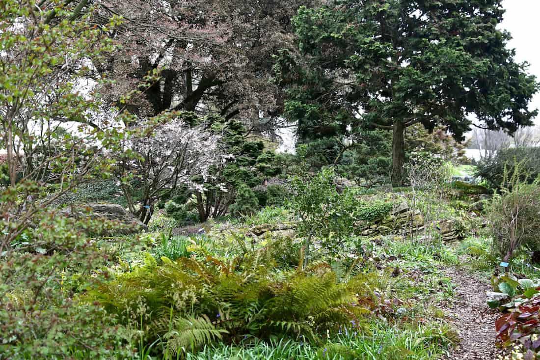 arboretum-paris