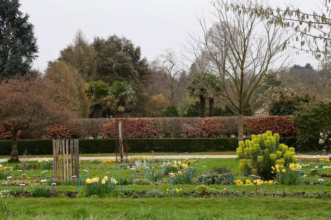 arboretum-paris12e-vincennes