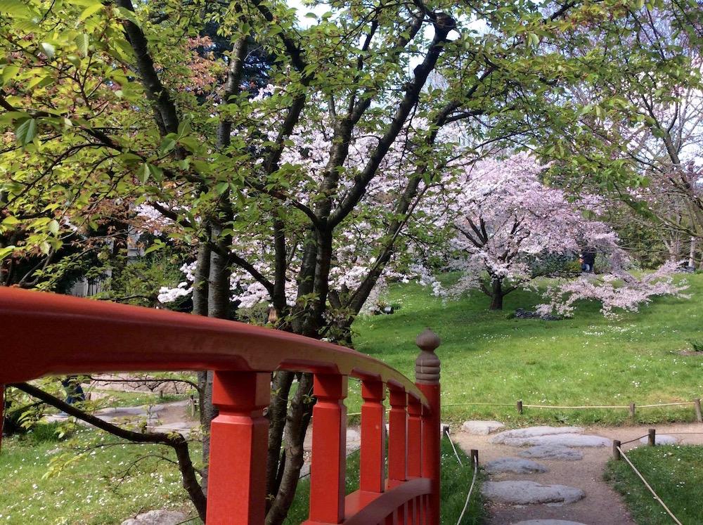 jardin-albert-kahn-printemps