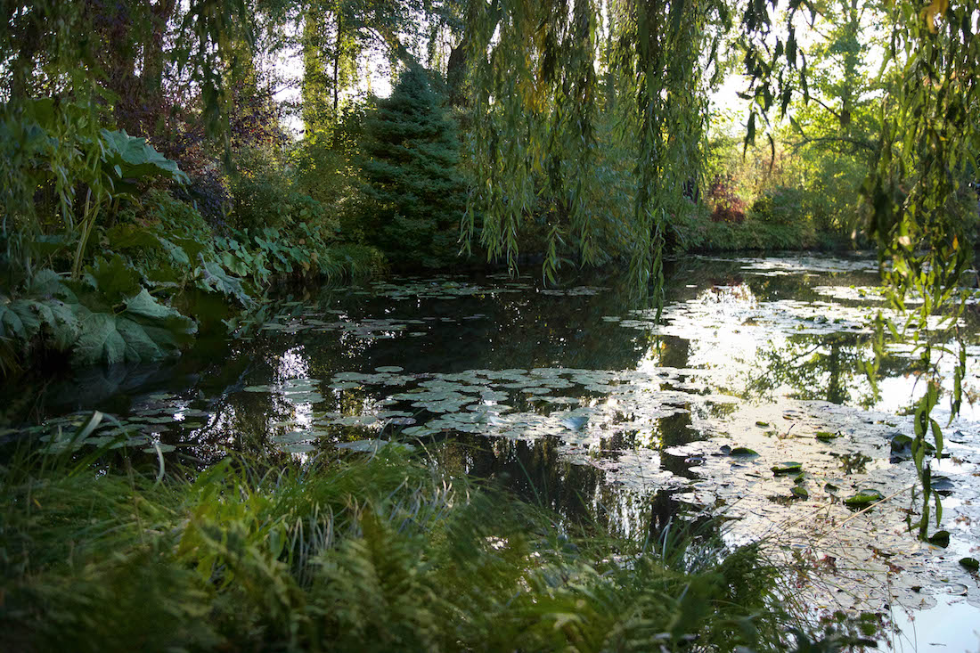 La maison et le jardin de monet giverny for Jardines monet