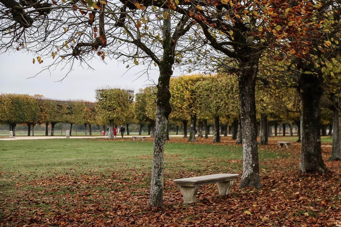 Week-end dans la Loire : le Château de Chambord
