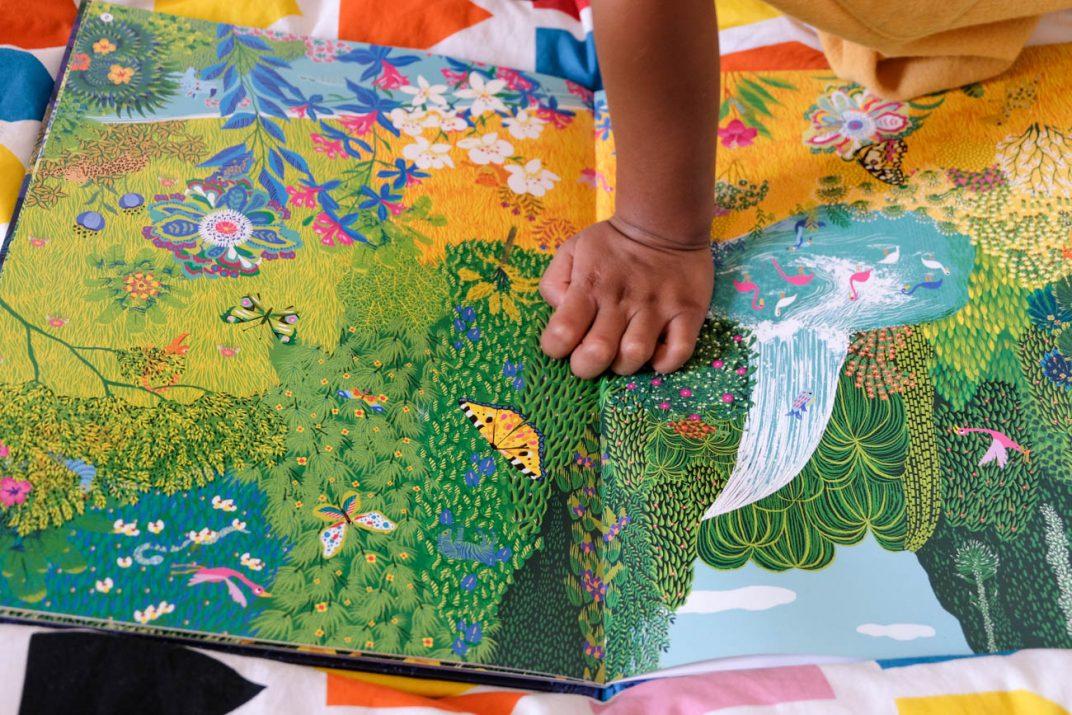 livres-enfant-3-ans-4-ans-caches-dans-la-jungle-3