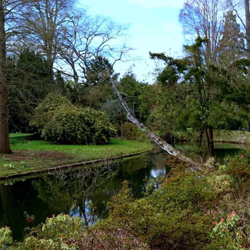 visiter-Arboretum-de-la-Vallee-aux-Loups-chatenay-malabry-92-balade