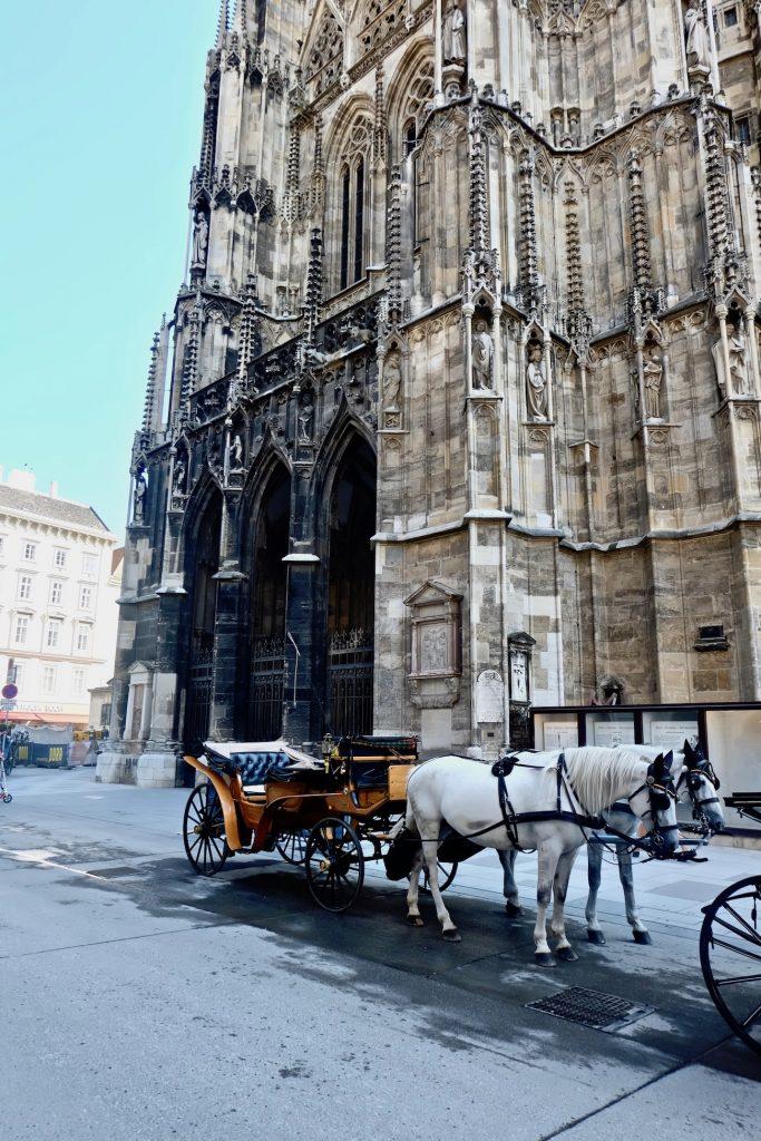 vienne cathédrale st etienne