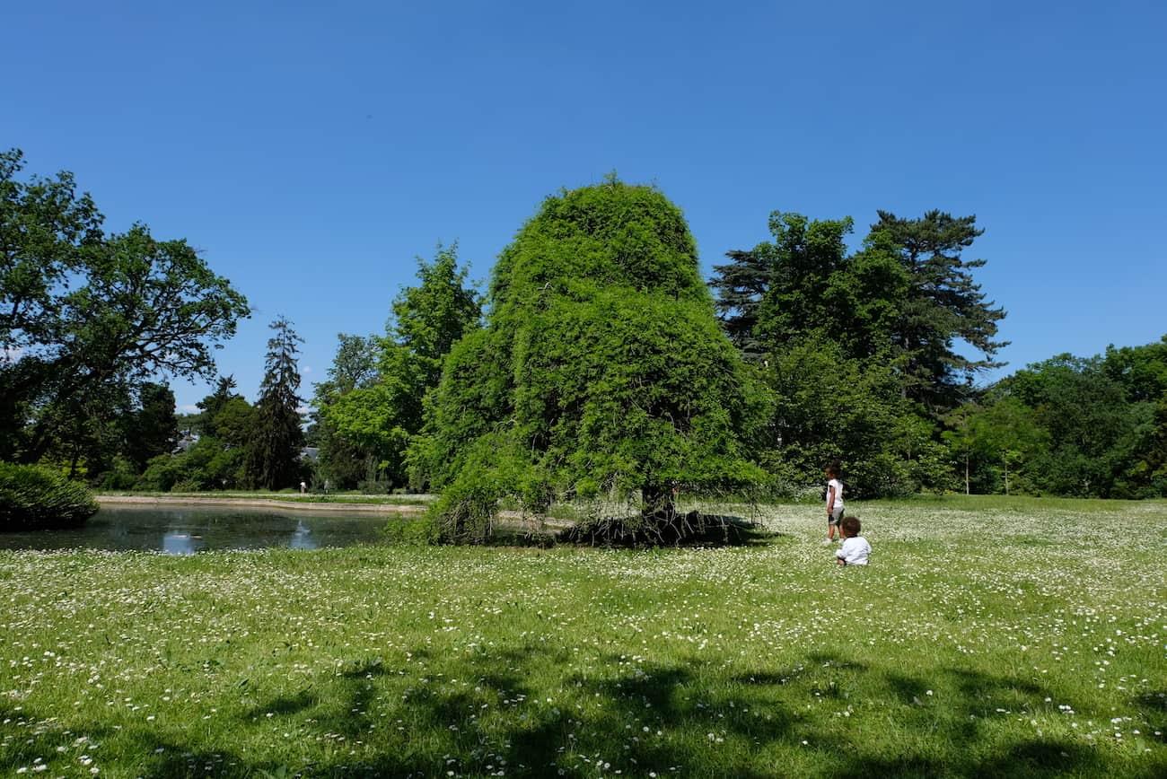 jardin-bagatelle-paris16-bois-de-boulogne-beau-jardin-parc
