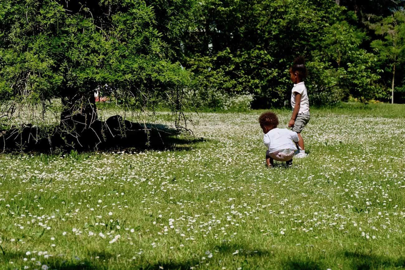jardin-bagatelle-paris16e-bois-de-boulogne-beau-jardin-parc