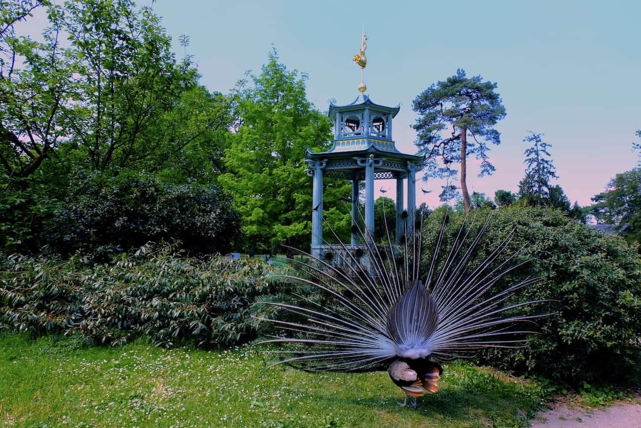 jardin-de-bagatelle-paris-bois-de-boulogne-beau-jardin-parc-neuilly