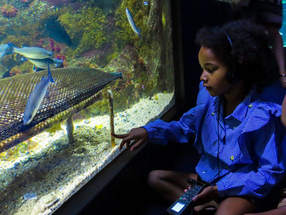 aquarium-la-rochelle-visiter-week-end-famille-2