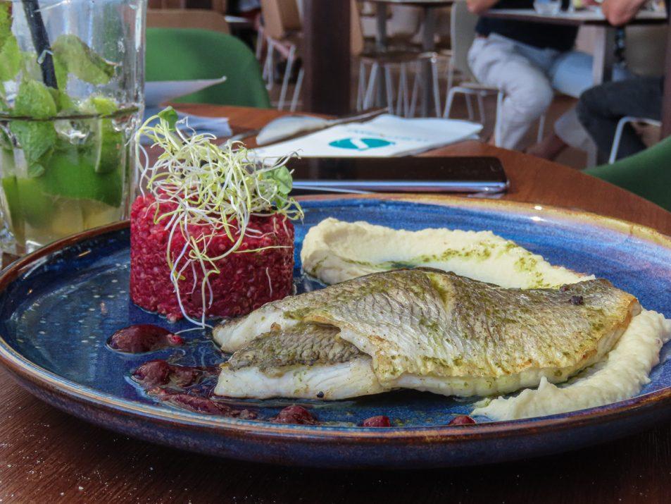 brasserie-la-haut-aquarium-la-rochelle-dejeuner-10