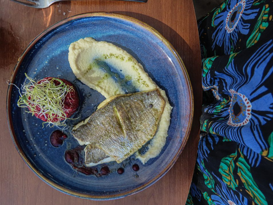 brasserie-la-haut-aquarium-la-rochelle-dejeuner-12