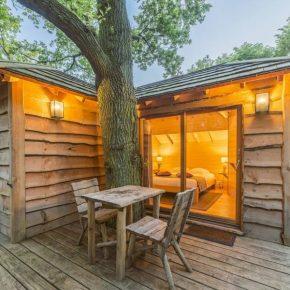 cabane-dans-les-arbres-autour-paris-foret