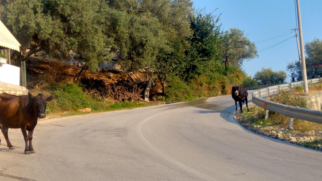 route-albanie
