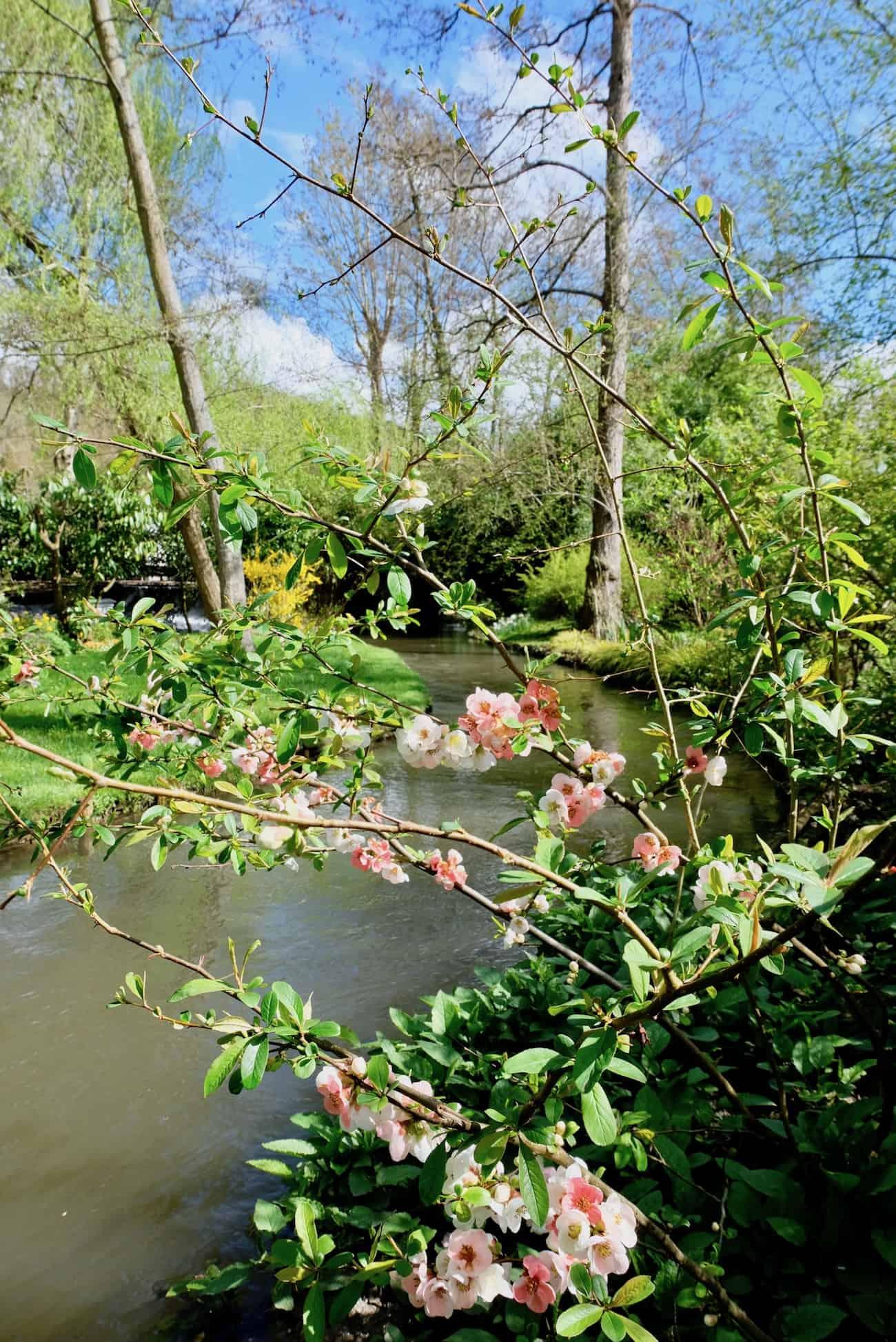 jardin-fondation-claude-monet-giverny-autour-de-paris