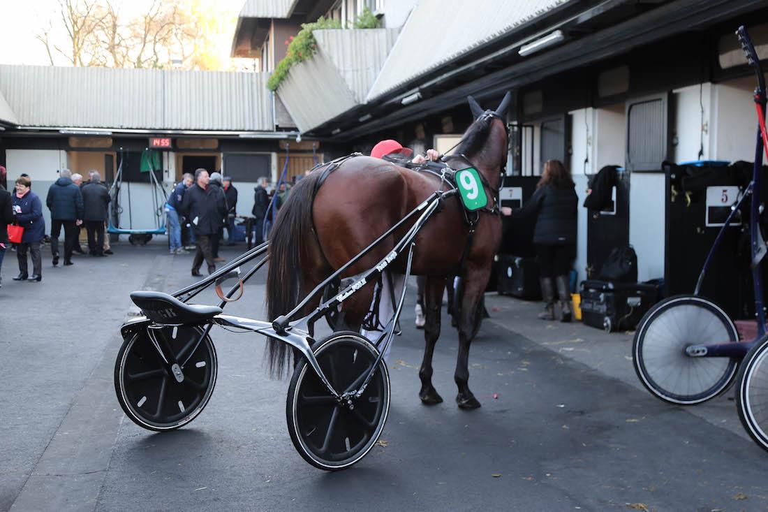hippodrome-vincennes-le-trot-paris-chevaux