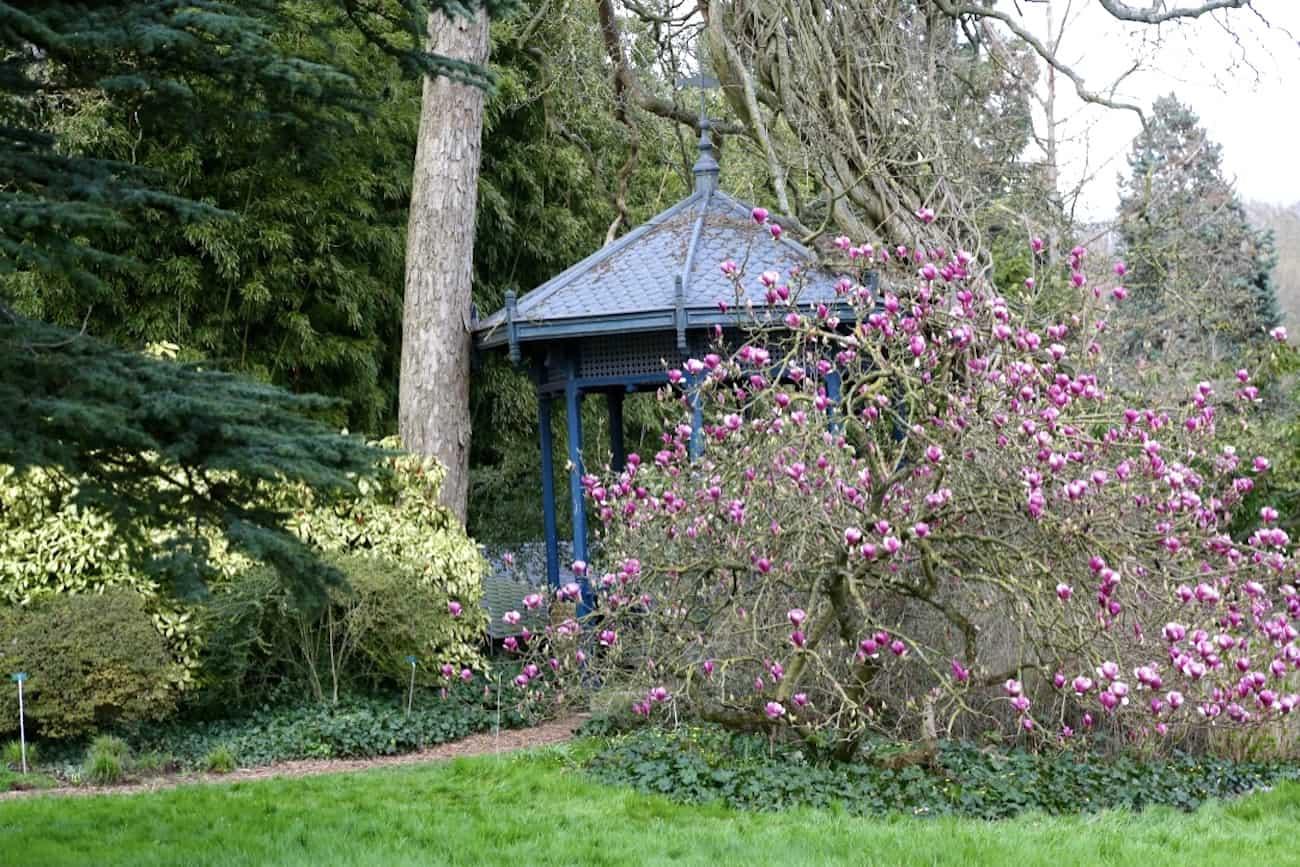 Arboretum-de-la-Vallee-aux-Loups-92-balade