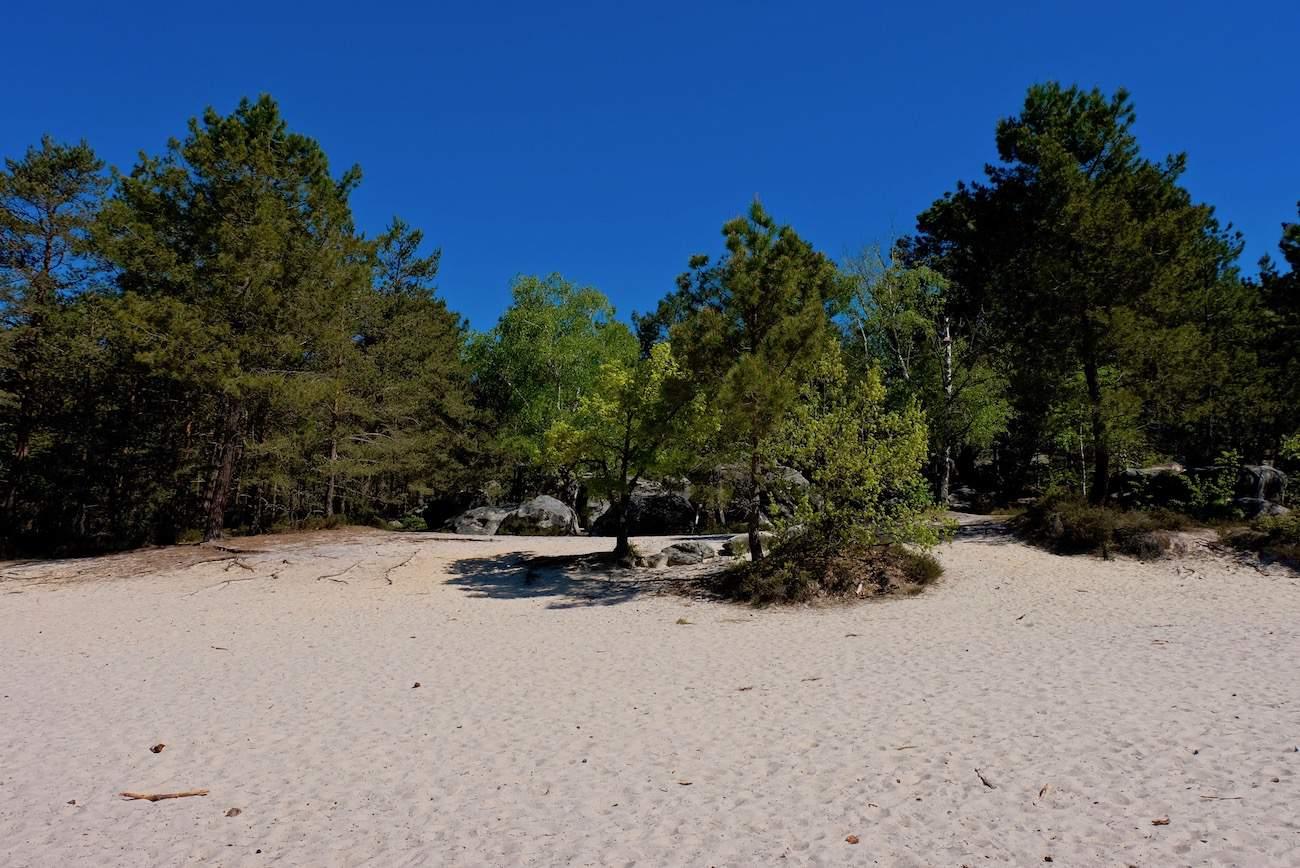 fontainebleau-cul-de-chien-sable-plage