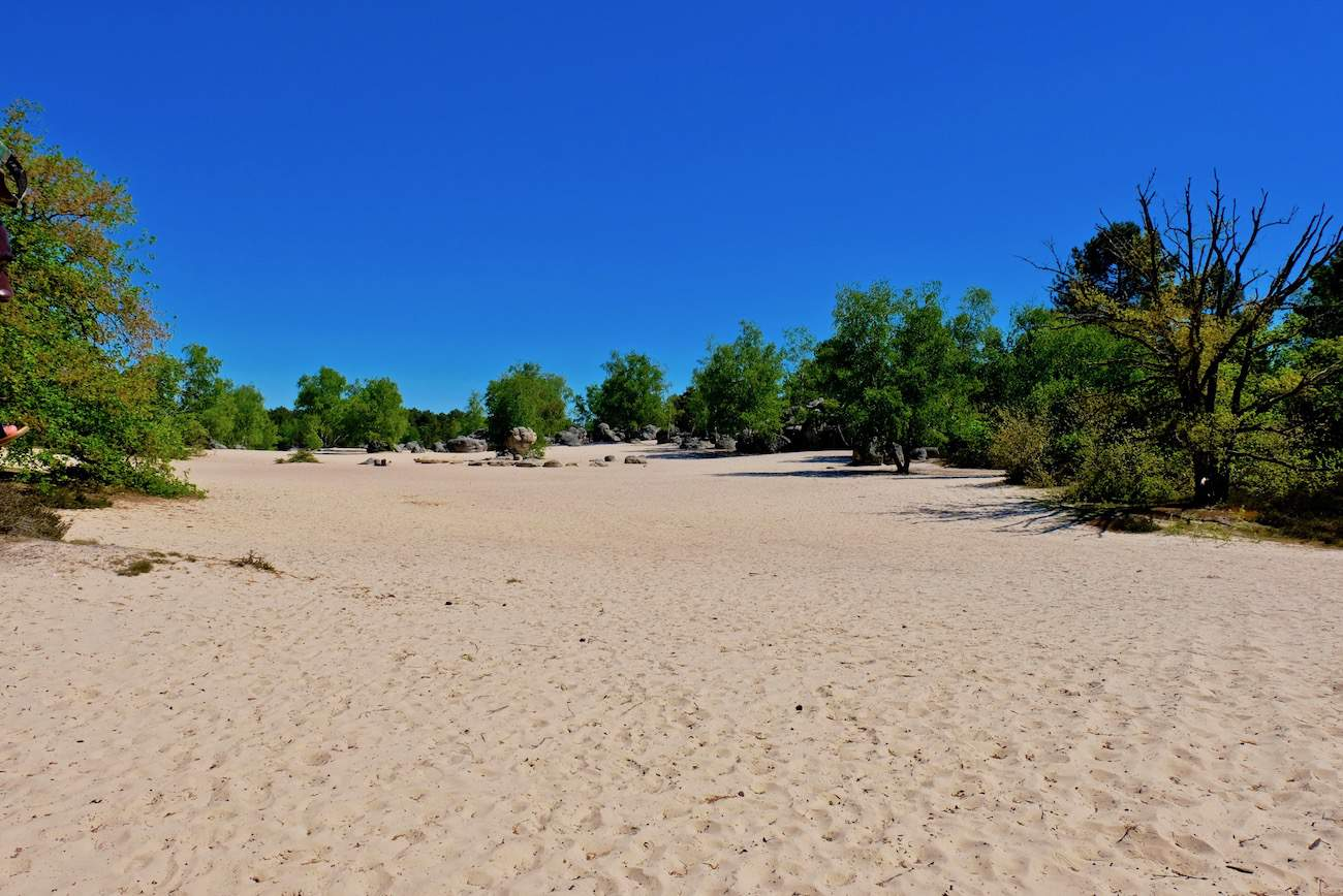 foret-fontainebleau-cul-de-chien-sable-plage-chemin