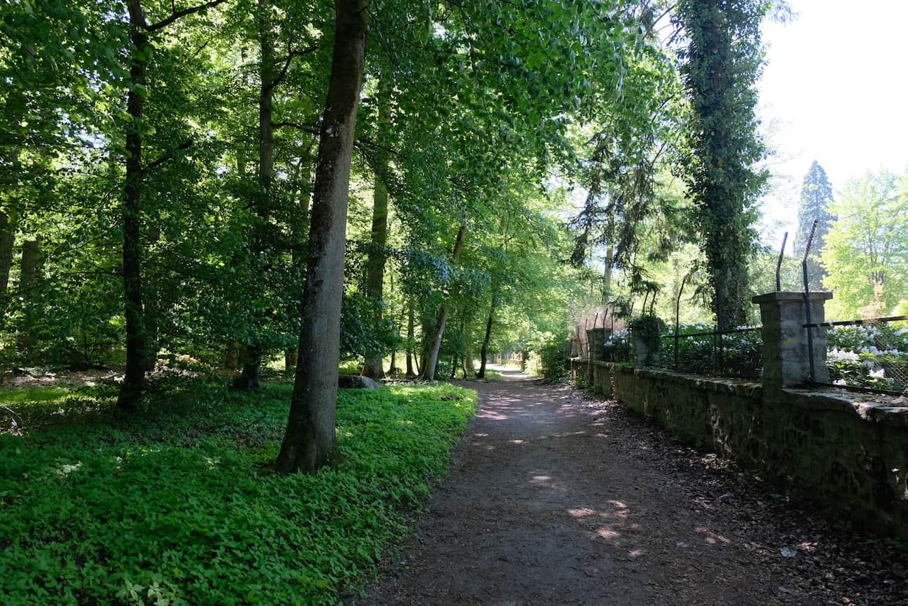 promenade-balade-ile-de-france-foret-fontainebleau