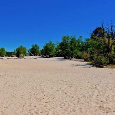 foret-fontainebleau-cul-de-chien-sable-plage-chemin-800x534