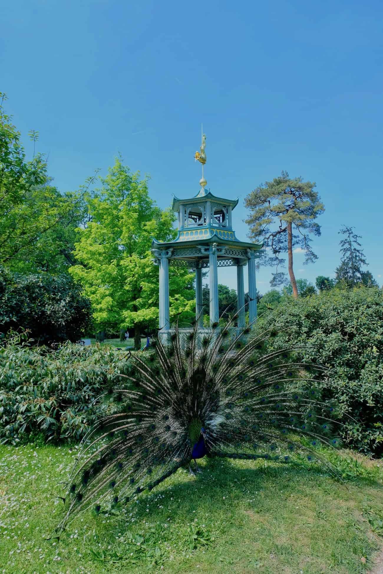 jardin-bagatelle-paris16e-boulogne-beau-jardin-parc