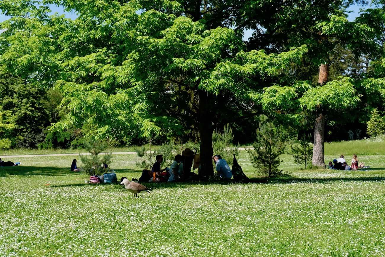 jardin-bagatelle-paris16em-bois-de-boulogne-beau-jardin-parc