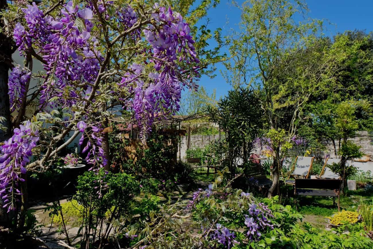 mornac-sur-seudre-beau-village-charente-maritime-royan-visite