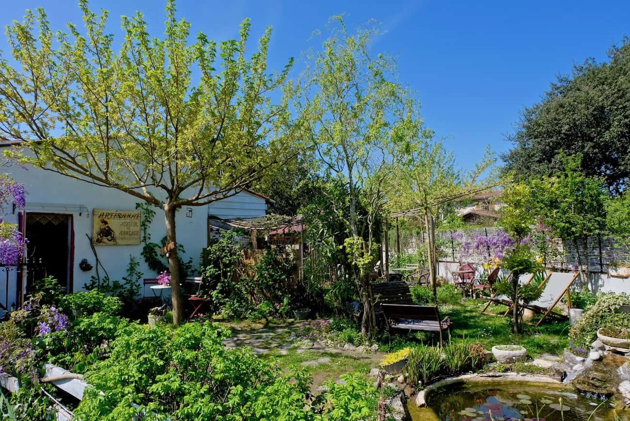 mornac-sur-seudre-plus-beau-village-charente-royan-visite