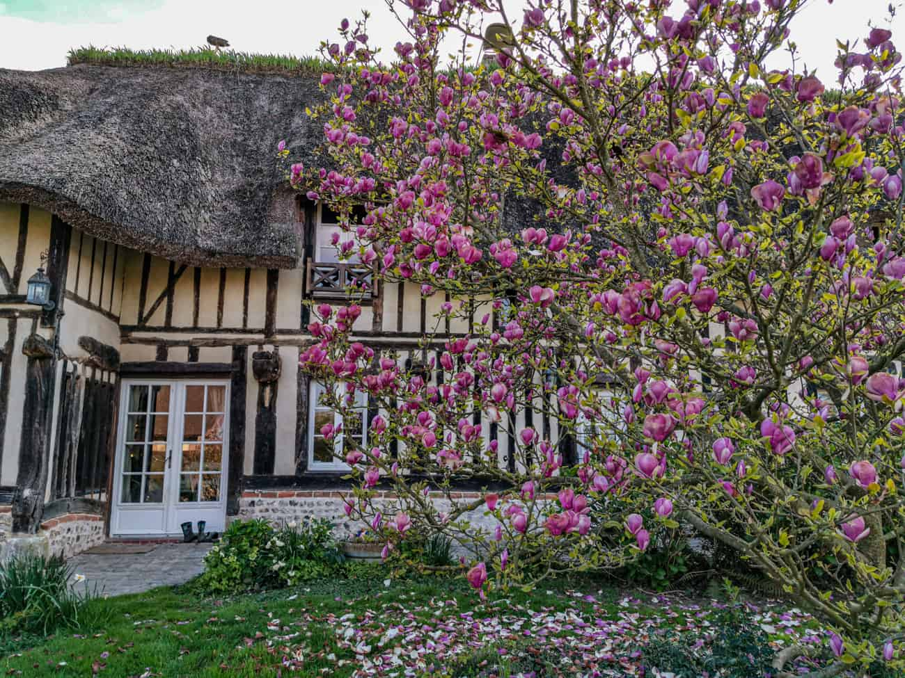 chambre-hotes-normandie-week-end-marais-vernier-9