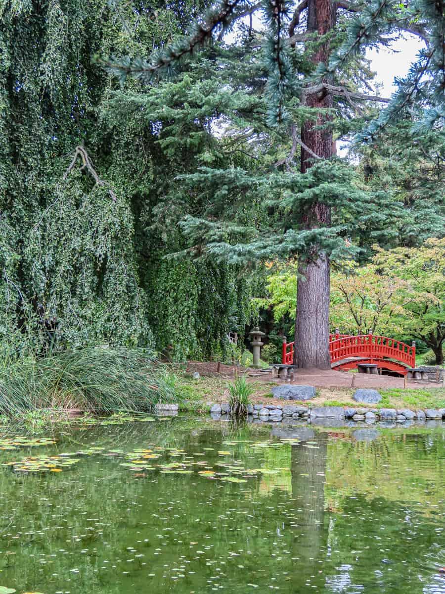 jardin-albert-kahn-musee-boulogne-billancourt-10