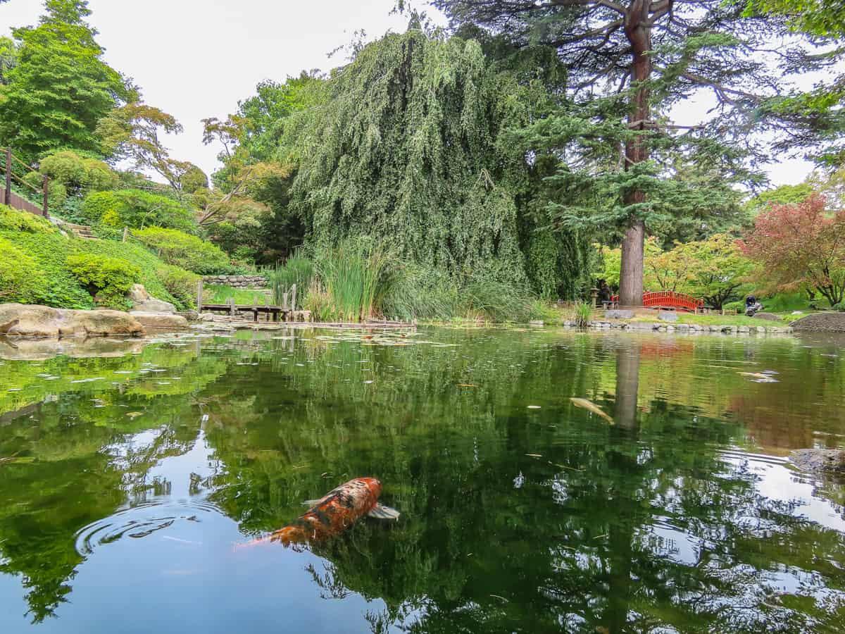 Les Jardins du Musée Albert Kahn - Boulogne-Billancourt ...