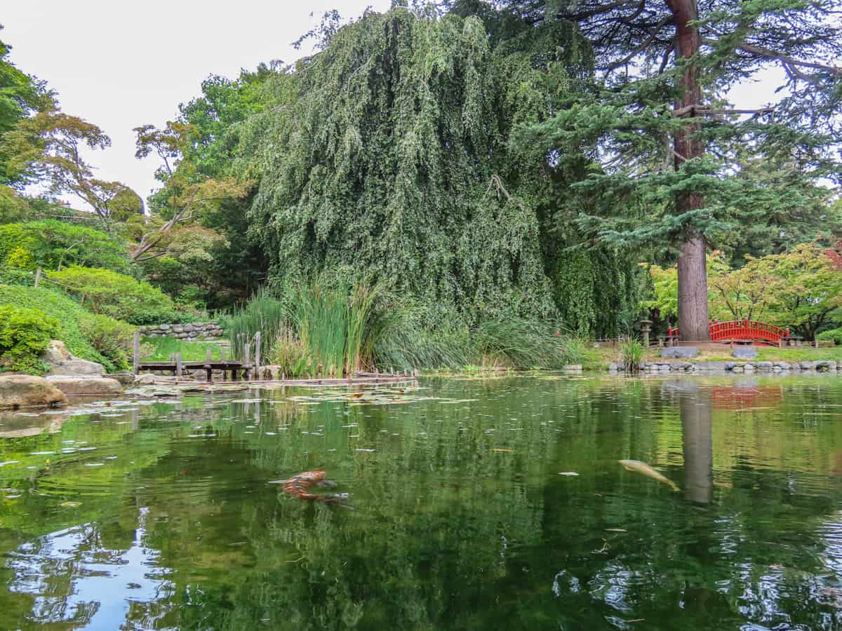 jardin-albert-kahn-musee-boulogne-billancourt-14