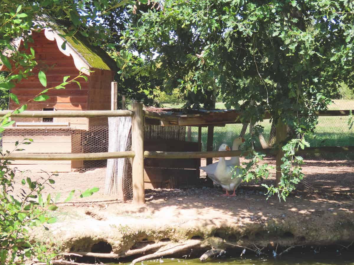 jardins-de-colette-correze-brive-la-gaillarde-6