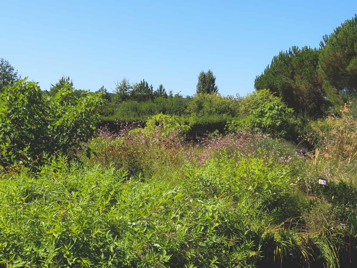 jardins-de-colette-correze-brive-la-gaillarde-7