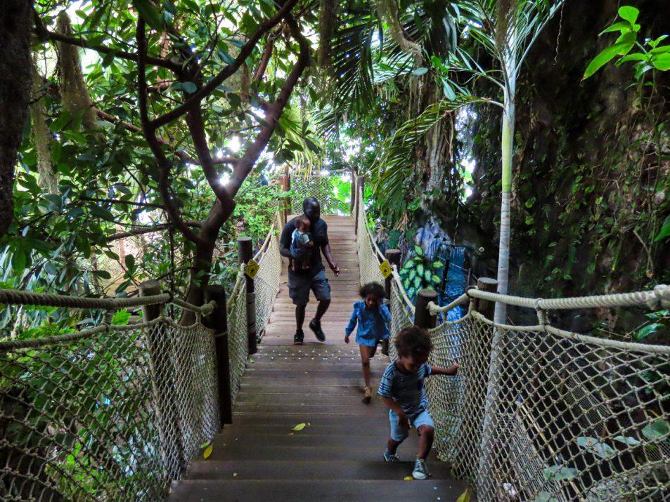 aquarium-la-rochelle-visiter-week-end-famille-16