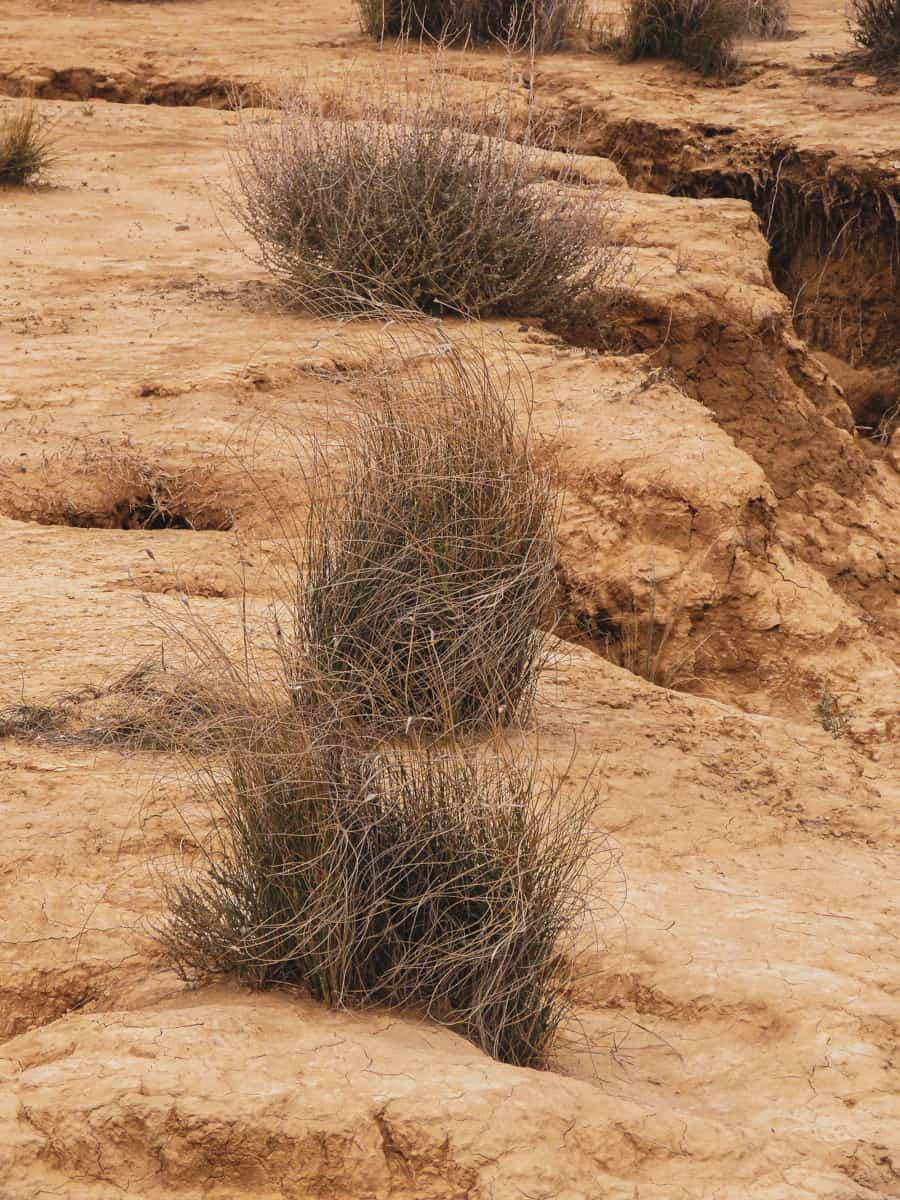bardenas-reales-desert-espagne-voyage-36