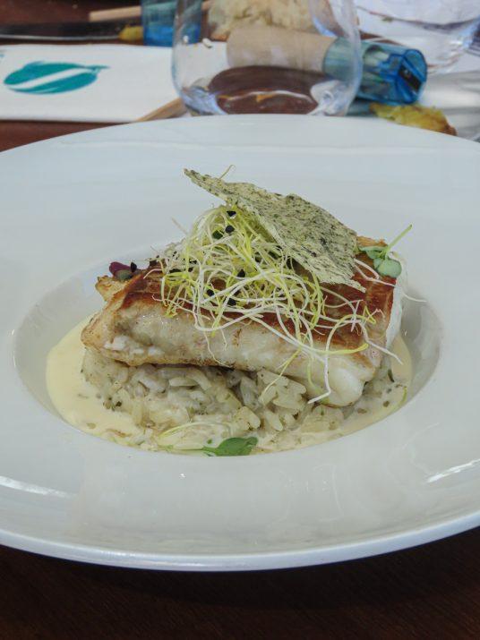 brasserie-la-haut-aquarium-la-rochelle-dejeuner-11