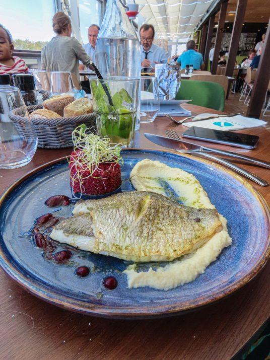 brasserie-la-haut-aquarium-la-rochelle-dejeuner-9