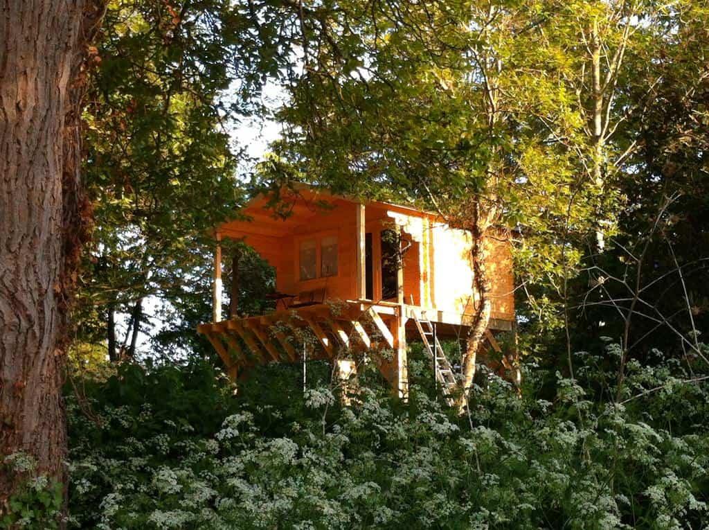 cabane-arbre-ile-de-france