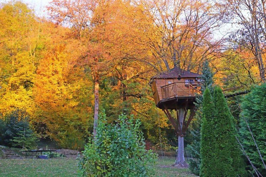 cabane-dans-les-arbres-du-charme–19780-fo-normal___v_fe0b4cdda26e30b43ad956acad85253e